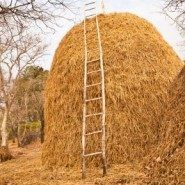 Resume Madness – Finding the Needle in the Haystack