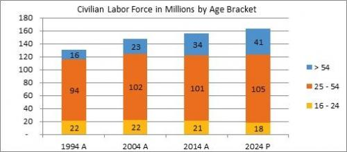 Labor Force by Age Bracket
